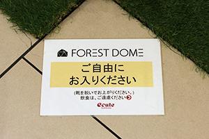 エキュート立川10周年記念でフォレストドーム設置の写真4
